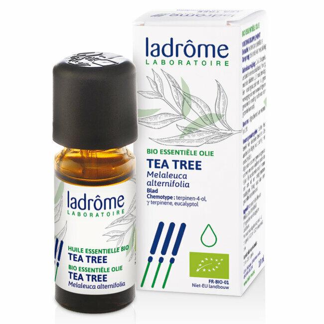 L 39 huile essentielle bio de tea tree est connue pour tre un antibiotique naturel et puissant - Huile essentielle tee tree ...