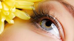 Maquillage bio et naturel pour les yeux - crayon, kohl et eyeliner