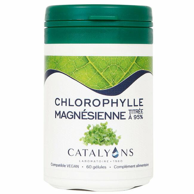 chlorophylle magn sienne catalyons 60 g lules acheter sur. Black Bedroom Furniture Sets. Home Design Ideas