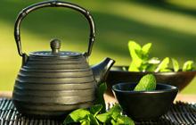 Thé vert bio, thé japonais, rooibos, matcha
